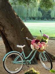 bicikl 2