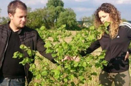 Mladi bračni par se zbog poljoprivrede iz Austrije vratio u Slavoniju