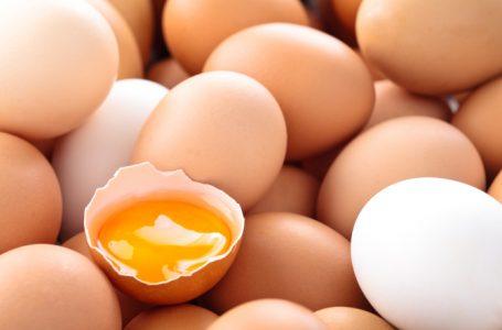Bosna i Hercegovina može izvoziti jaja u EU