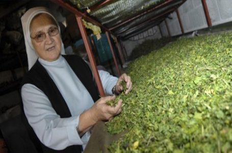 Recepti  časne sestre ozdravljaju tisuće iz cijelog svijeta